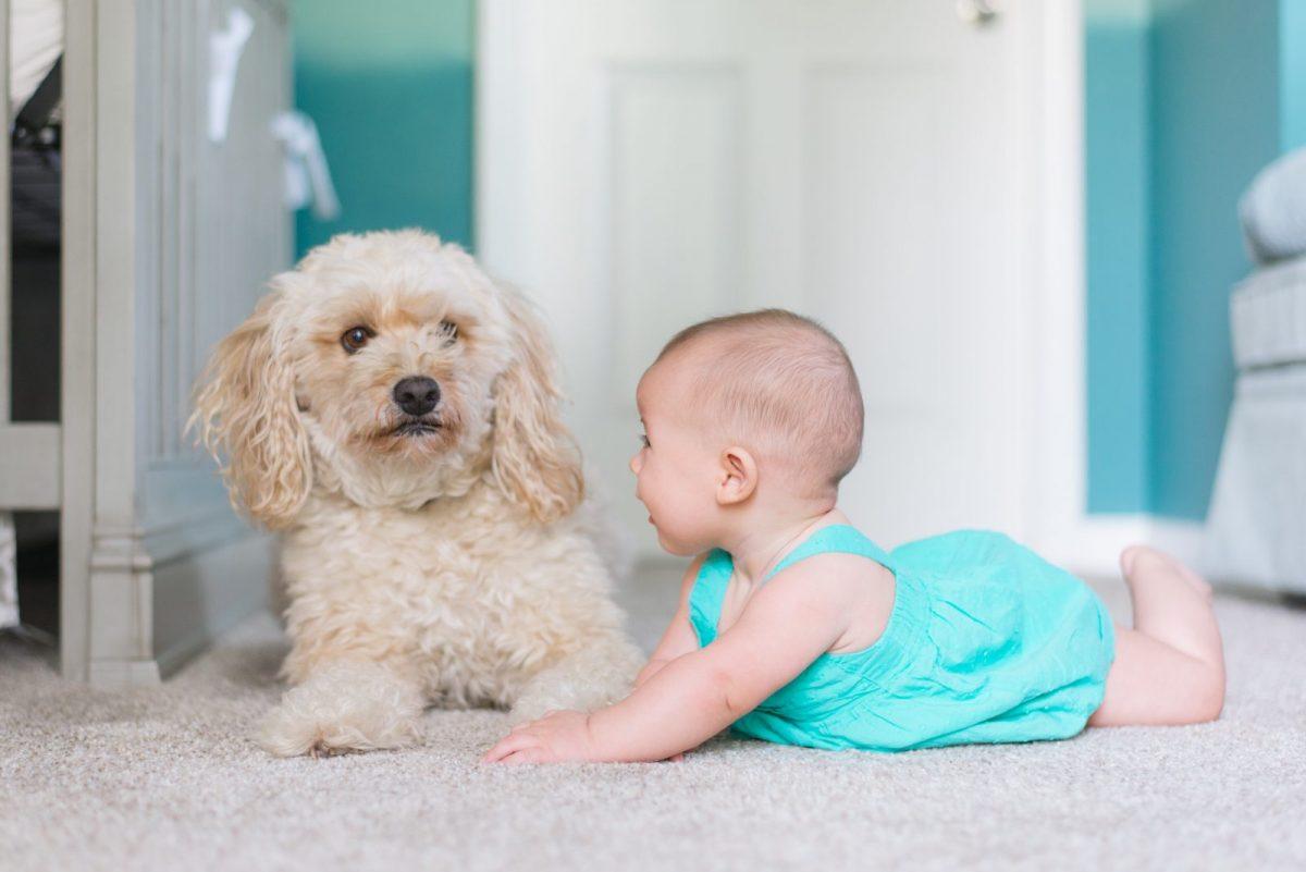 Nouă curiozităţi despre bebeluşi